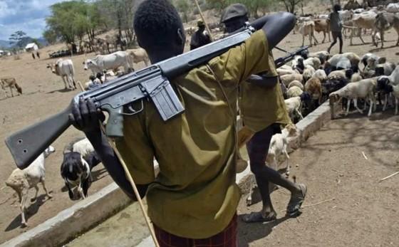 Herdsmen attack Niger state: death toll hit 29