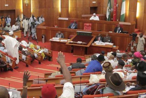 nigeria-senate.jpg.jpeg