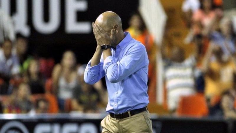 Pako Ayestaran was the assistant to Newcastle boss Rafael Benitez