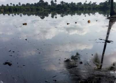 Almost all the fishes in some parts of the Niger Delta have killed