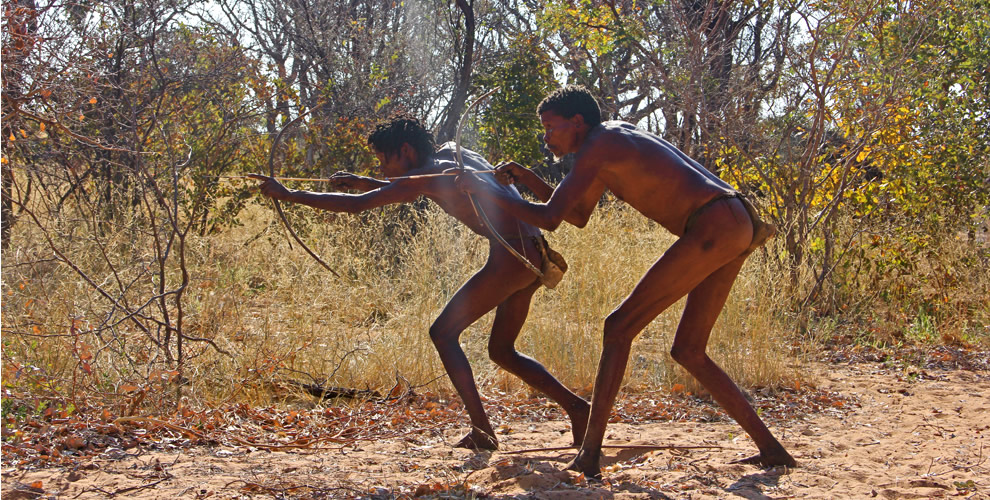 When did humans first daubed arrows with poison - research
