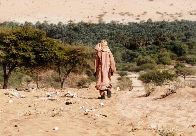 Africa has plans for a Great Green Wall: why the idea needs a rethink