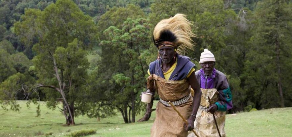 UN experts ask Kenya to stop Sengwer evictions from forest land
