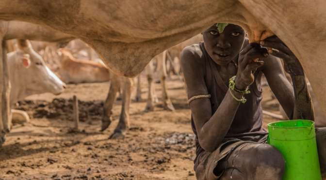 The life of South Sudan's Dinka people – in pictures