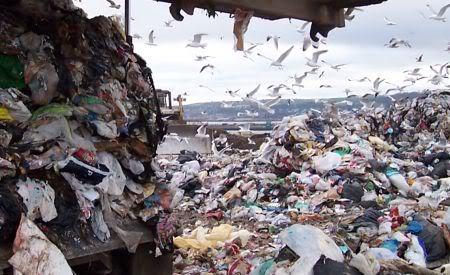 recycling_landfill