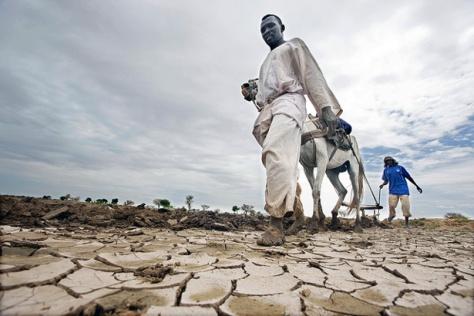 darfur-farmer-climate