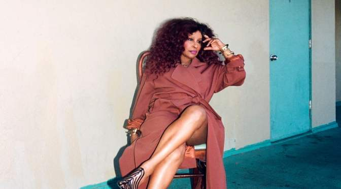 Pop and Black Panthers: the glorious life of Chaka Khan